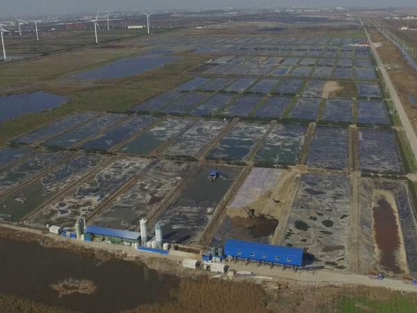 上海老港暂存库区污泥处理项目